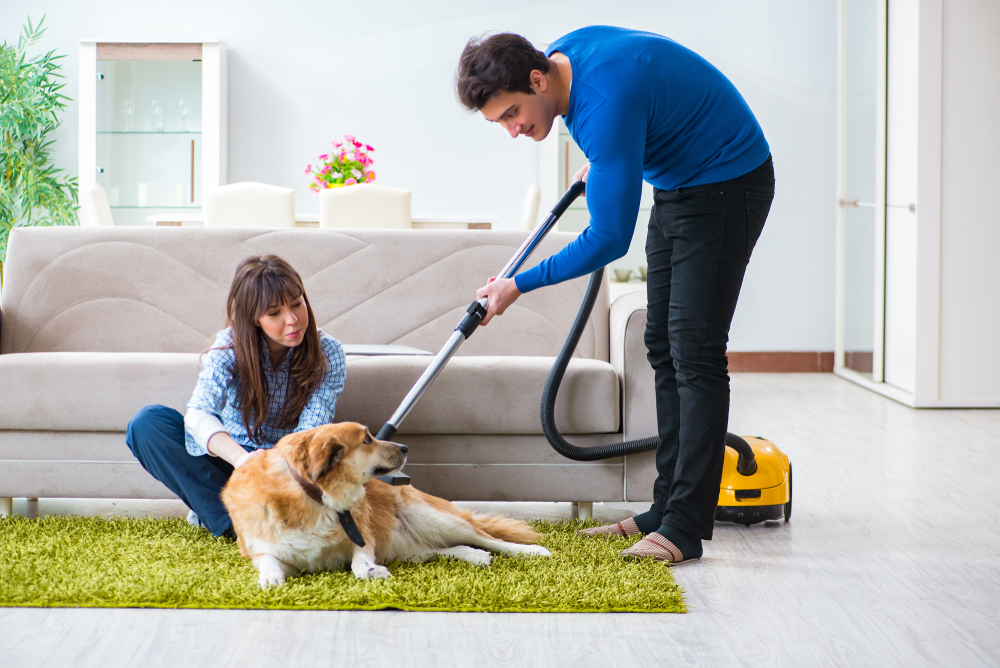 Husband cleaning house from dog fur